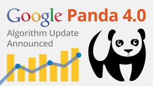 update google panda 4